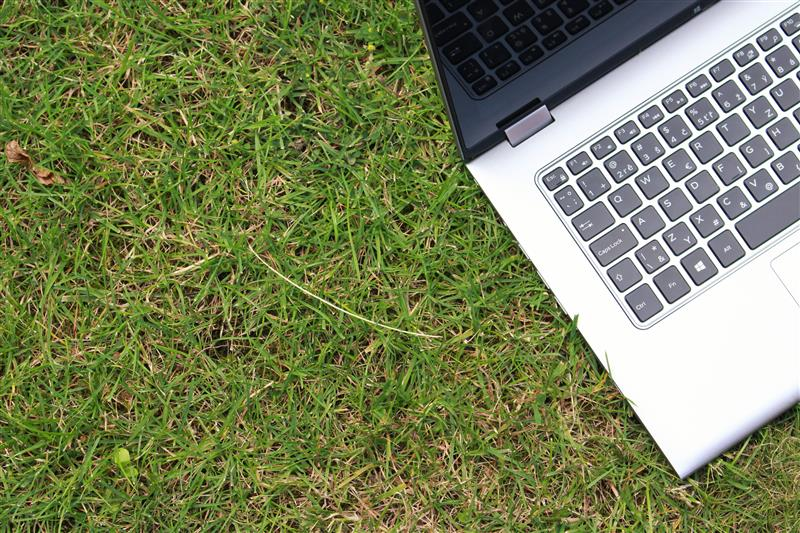 Laptop in grass #4