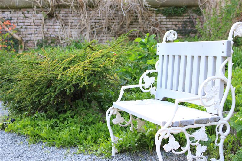 White romantic bench in the park